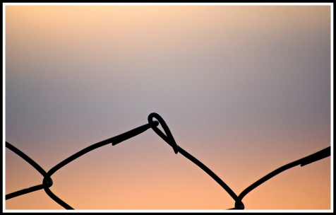 a close up of a wired fence with a beautiful sunset sky behind