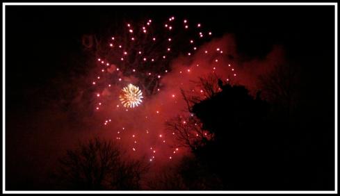 Beautiful red fireworks illuminate the black sky