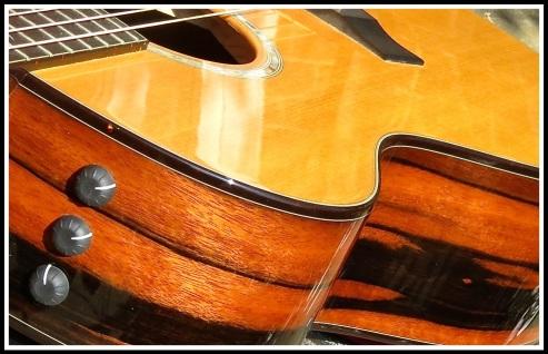 Macasser Ebony Taylor Guitar 1
