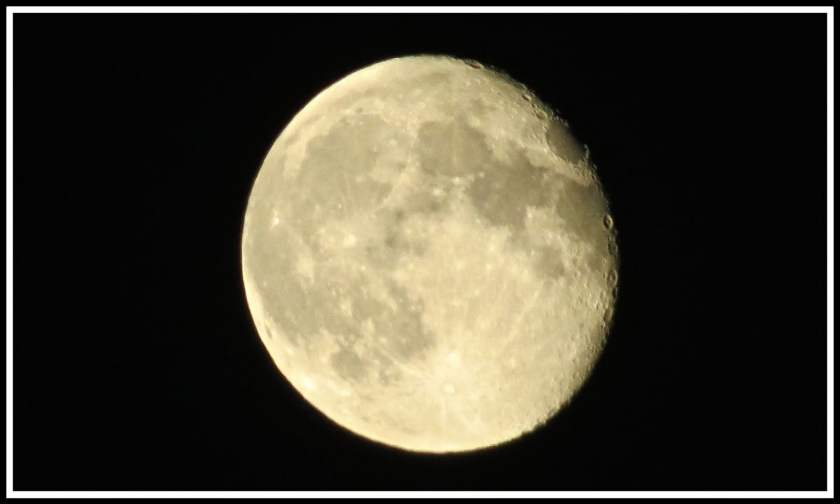 An almost full moon centred in a black background