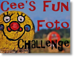 Cee s fun photo challenge logo
