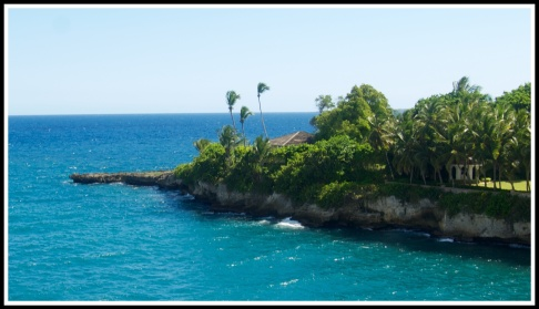 Palms trees swaying as the coastline appears from right to left