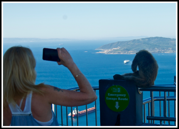Sarah taking a video of one of the monkeys at the top of Gibraltar