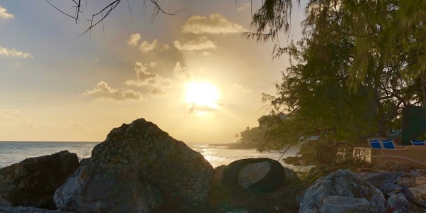 Beautiful Barbados sunset with dark rocks below the sun and trees to the right