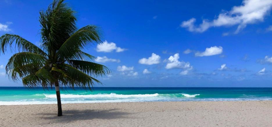 Dover Beach 1, Barbados